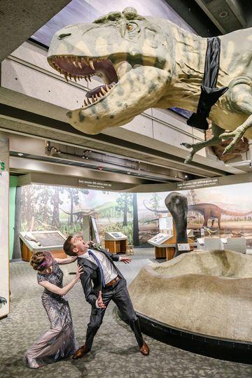 boston museum of science trex wedding 51 79286