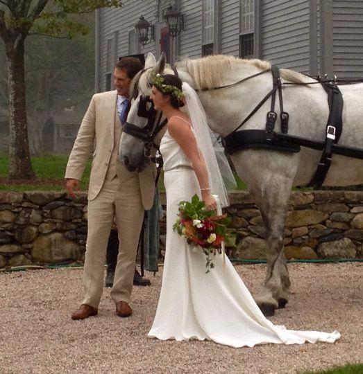 bridegroomed