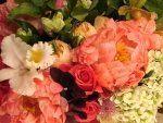 Tmx 1258472791317 Peony Suffern wedding florist