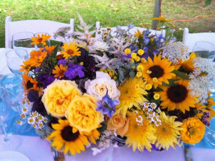 Tmx 1345515372563 Di72812023 Suffern wedding florist