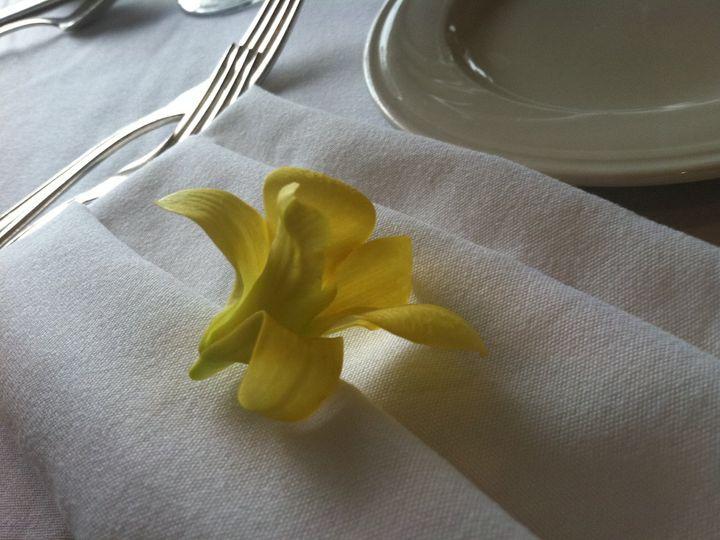 Tmx 1346829165945 SuandRay23 Pleasant Mount wedding florist