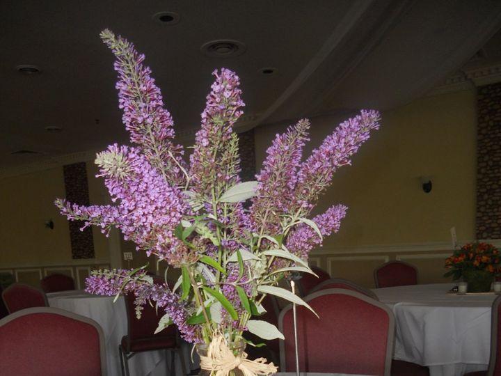 Tmx 1347236112315 DSCN0738 Pleasant Mount wedding florist