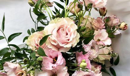 Blooms N' Belle