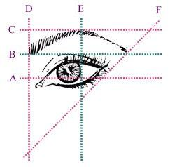voted best brow design in Annapolis  and we tint as well