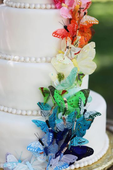 cake 00