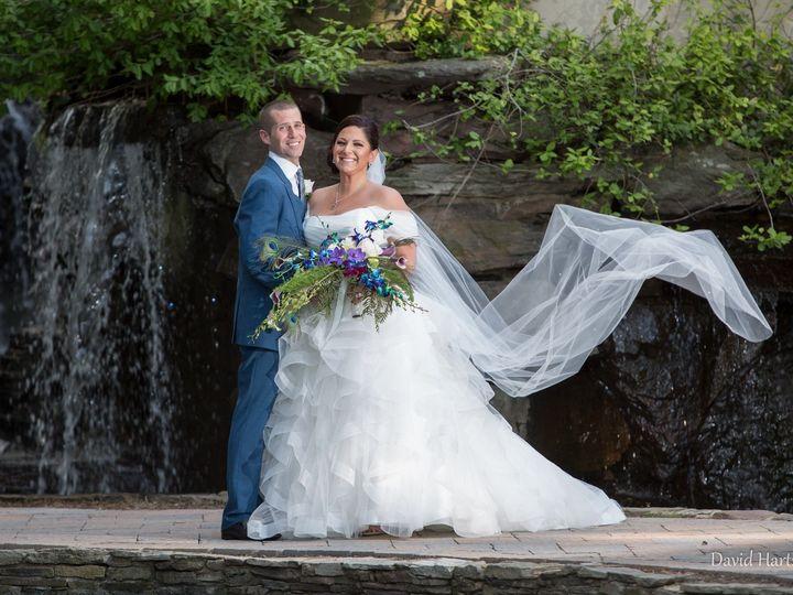 Tmx 1492965070843 Arielalexander 1506 Vienna, VA wedding planner