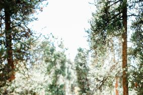 Stacy Story Photography