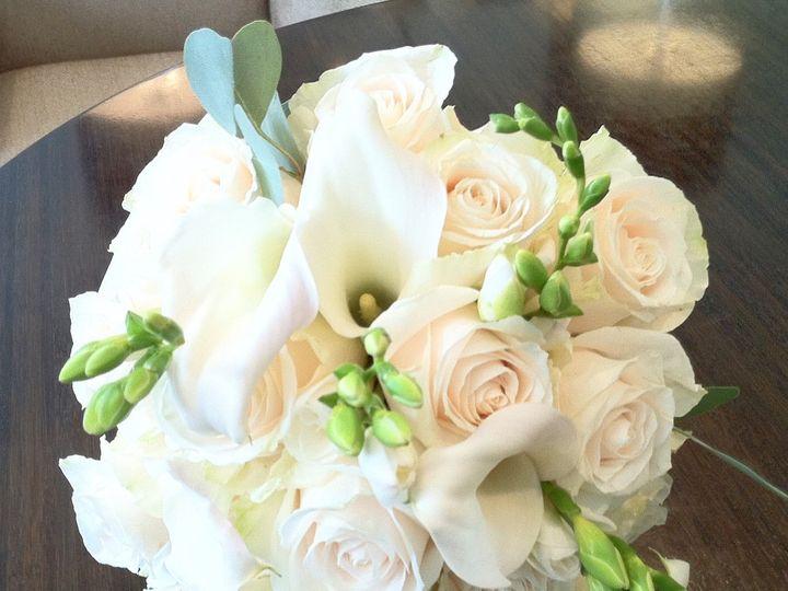 Tmx Img 3264 51 602686 158690047796372 Houston, TX wedding florist