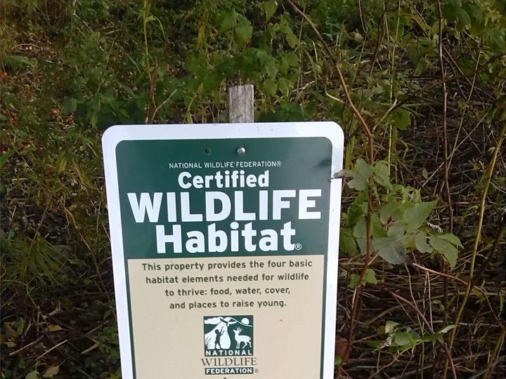 Tmx 1414790754342 Wildlife Habitat Machiasport wedding travel