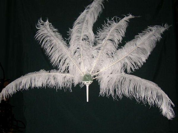 Feathers others sell for same price???Dont get stuck with feathers like this, Yuck!!!