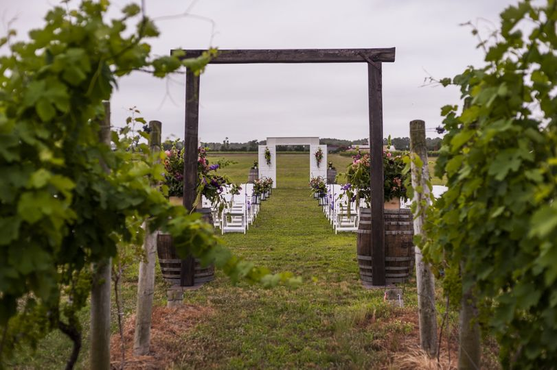 Late Spring wedding in the Vineyard