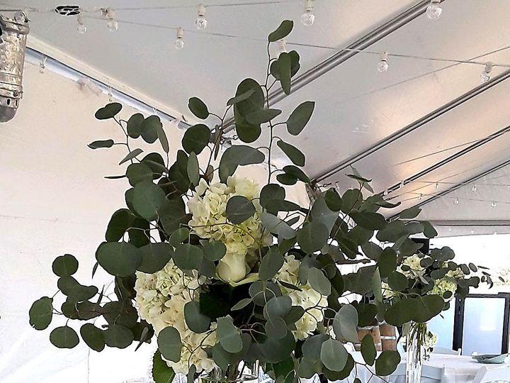Tmx Img 1362 51 61986 157437709882121 Fort Worth, TX wedding florist