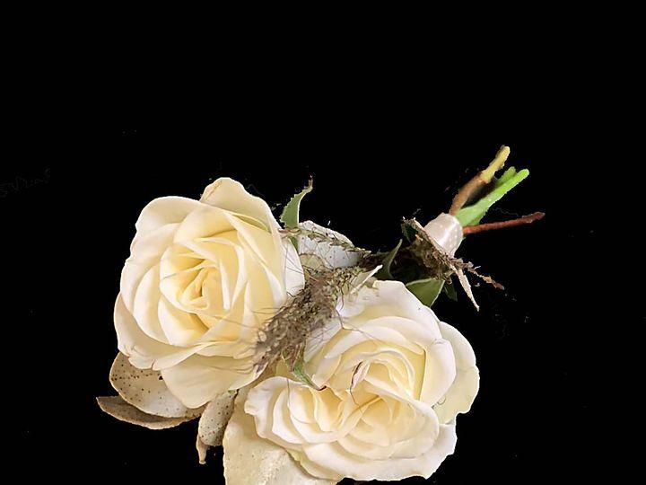Tmx Img 1863 51 61986 160450472041597 Fort Worth, TX wedding florist