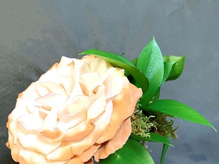 Tmx Img 1871 51 61986 160450473279835 Fort Worth, TX wedding florist