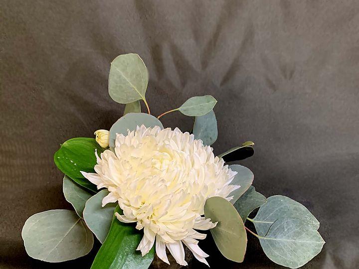 Tmx Img 1872 51 61986 160450473014194 Fort Worth, TX wedding florist