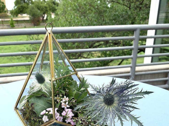 Tmx Img 2218 51 61986 161893312081164 Fort Worth, TX wedding florist