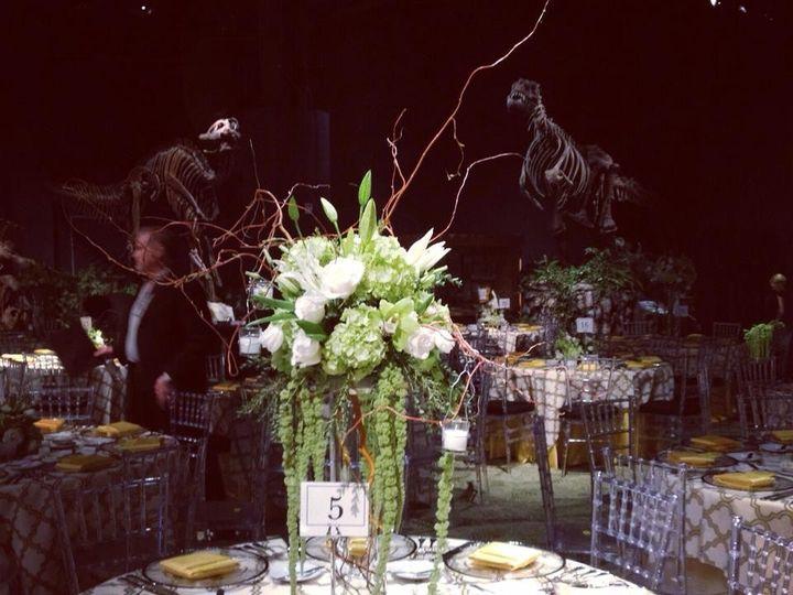 Tmx 1511898703732 Petals1 Orlando, FL wedding florist