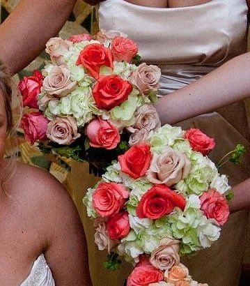 Tmx 1357869394013 Ipadphotos753 Auburn Hills, Michigan wedding florist