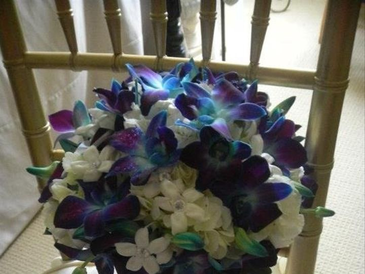 Tmx 1357869395849 Ipadphotos872 Auburn Hills, Michigan wedding florist