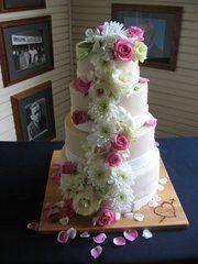 Tmx 1332786492467 294233101502812473579747016407a Titusville wedding cake