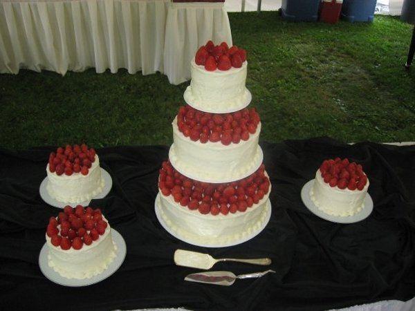 Tmx 1332786873621 1968449028079734488446297312160903705n Titusville wedding cake