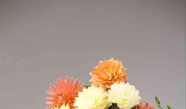 Blooming Spaces