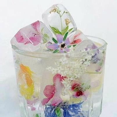 Decorative ice cubes with edible blossoms.