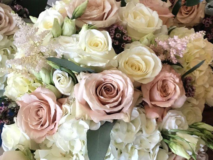 Tmx Img 8167 51 913196 1561635725 Smithfield, VA wedding florist