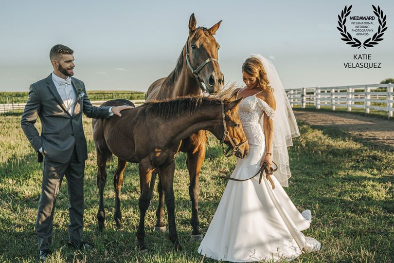 chicago wedding photographer windy city production 17 51 547196 1571961448