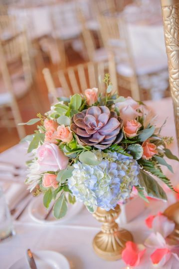 Succulent Centerpiece | Photo courtesy of Laura Meyer Photography