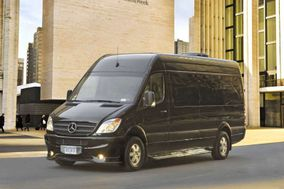 Black Beauty Event Transportation