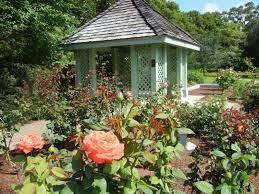 Tmx Leu Gardens 51 741496 160529966264911 Orlando, FL wedding officiant