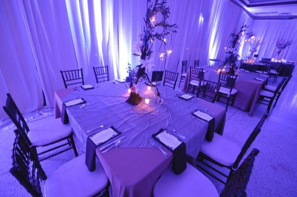 Weddings By Apollo