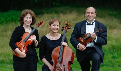 Tucson Strings Chamber Players 1