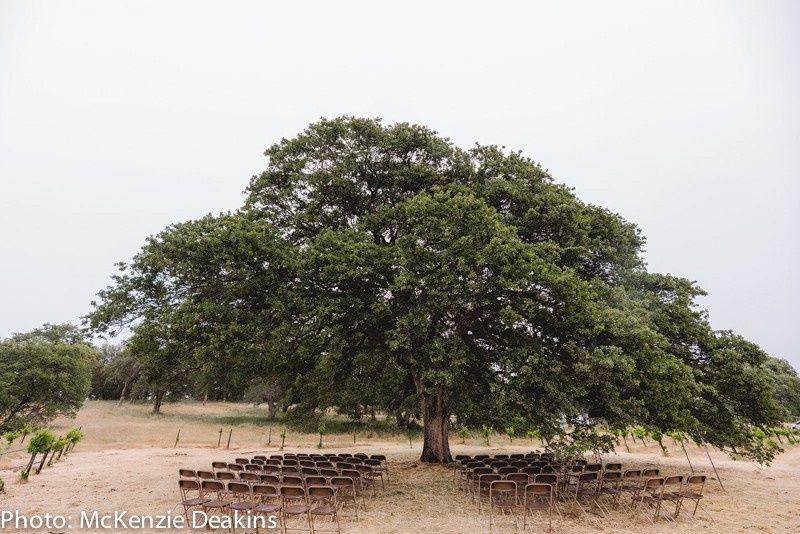 Vineyard Oak Ceremony