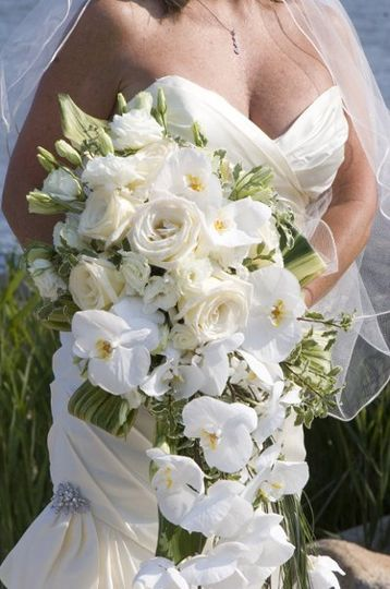 Dramatic cascade bouquet of phalaenopsis orchids and open virginia roses