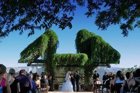 Admired Weddings