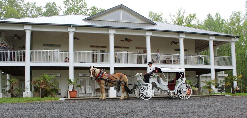 horse and carriage in front of house 2015