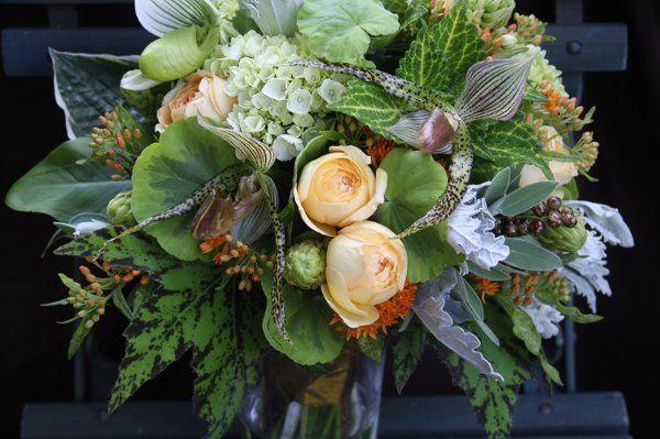 Anna Mara Flowers