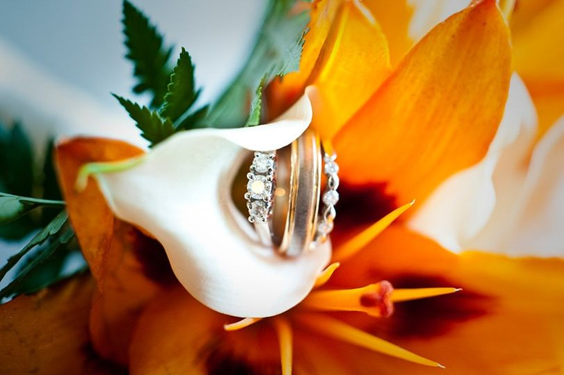 bay area san francisco wedding photographer 51 490896 1567494496