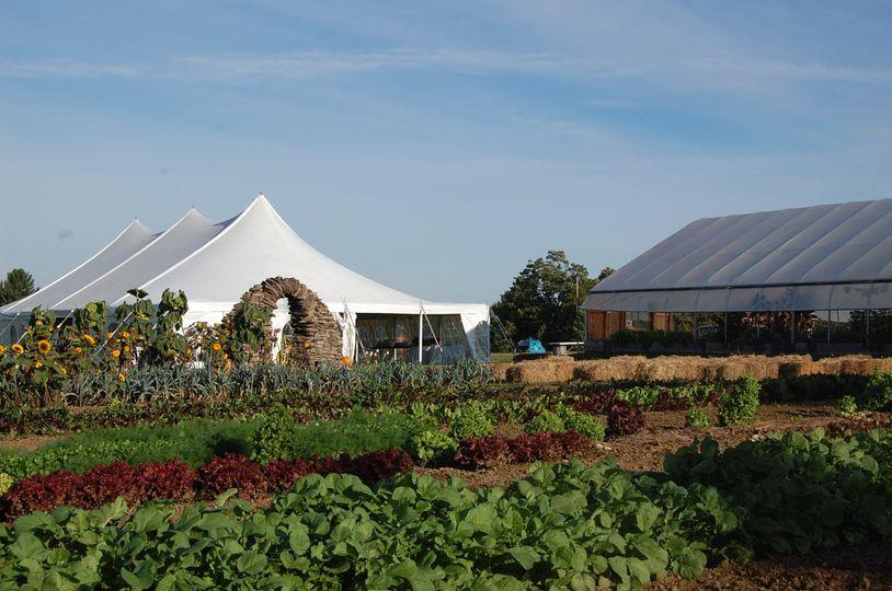 farm wedding 3
