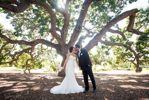 Tmx Emily Eli Tree 51 354996 Pleasanton, CA wedding venue