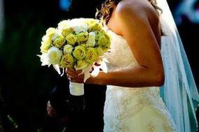 Blue Sapphire Florist, LLC