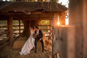 Dallas Love Photography