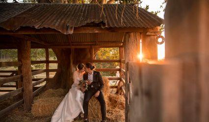 Dallas Love Photography 1