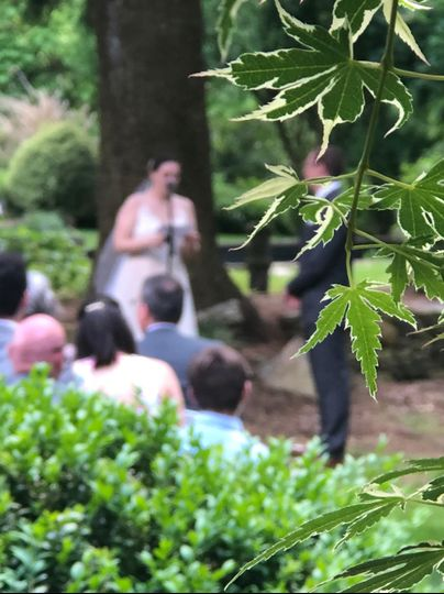 Ceremony in the forest