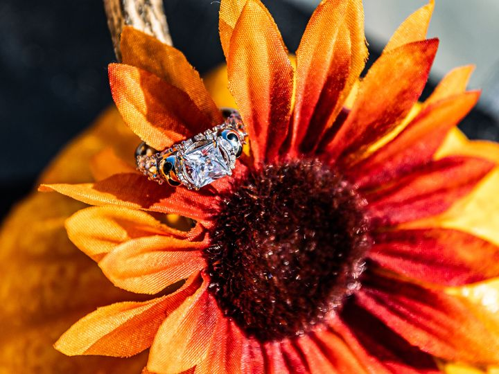 Tmx N D Engage 68 51 1873107 160366185965018 Kennesaw, GA wedding photography