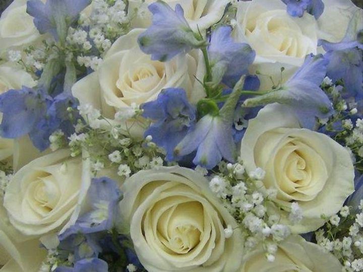 Tmx 1328021884729 22lodi Lodi, New Jersey wedding florist
