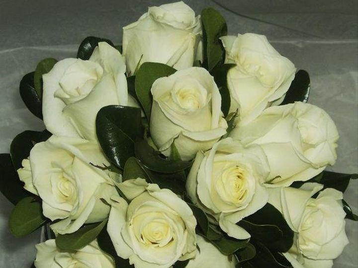 Tmx 1328021896468 23lodi Lodi, New Jersey wedding florist