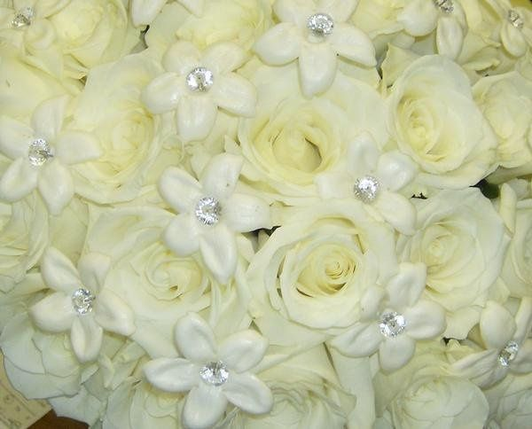 Tmx 1328021918368 26lodi Lodi, New Jersey wedding florist